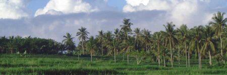 Bali Kurzreisen © Asien Tourismus B&N Tourismus