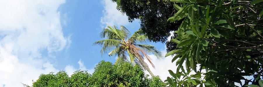 Asien Reisen © Asien Tourismus B&N Tourismus