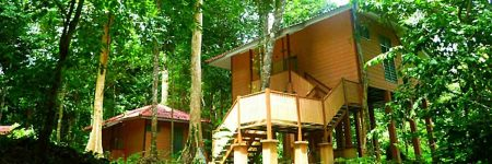 Chalet Ula Muda © Earth Lodge Ula Muda Field Reserch Center