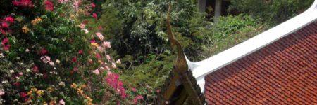 Thailands Goldenes Dreieck Zubucherreise © Asien Tourismus B&N Tourismus